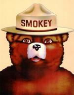 drawing of Smokey Bear